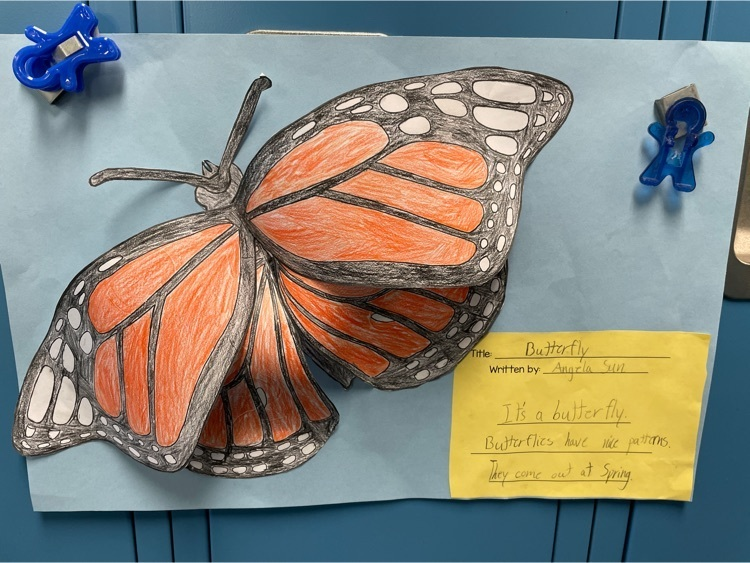 fourth grade butterfly haiku poems