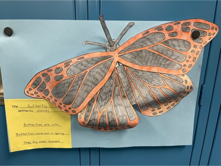 butterfly haiku poems